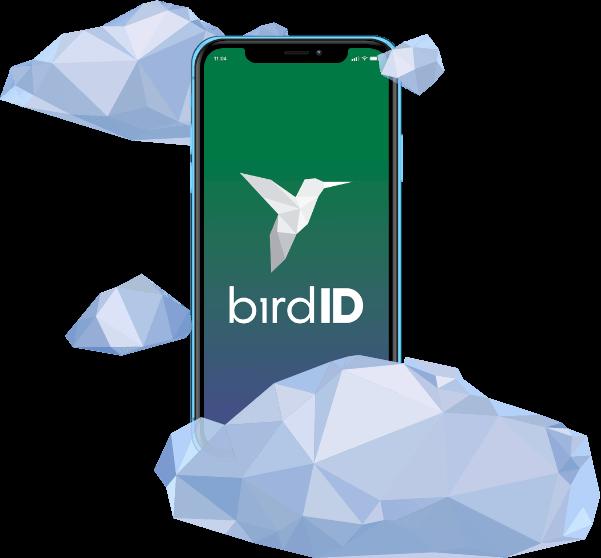 Bird ID - CD em nuvem